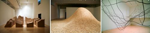 Maya Lin Riggio Systematic Landscapes