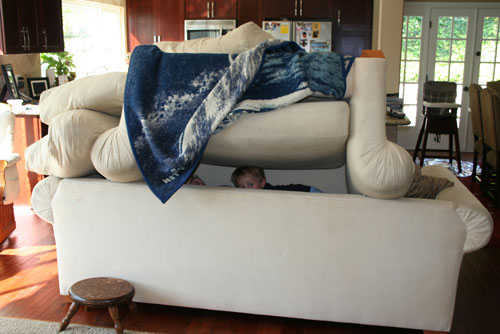 Couch Cushion Architecture A Critical Analysis