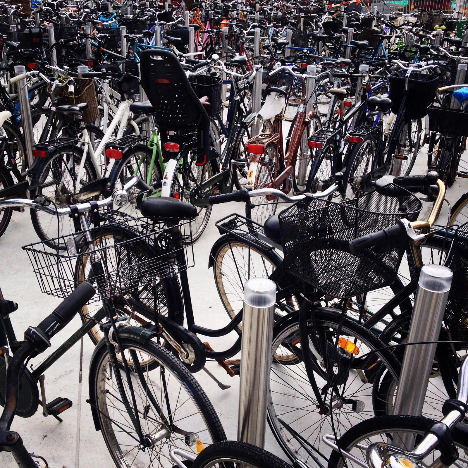 BUILD-LLC-bikes