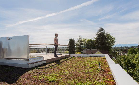 BUILD-LLC-CSH-Ext-Roof-02