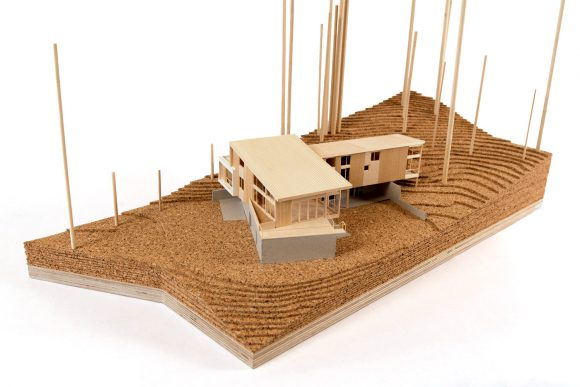 BUILD-LLC-Mercer-Island-Model